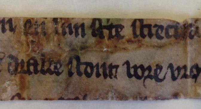 Life Beyond the Grave: The Leiden Apocalypse Fragments