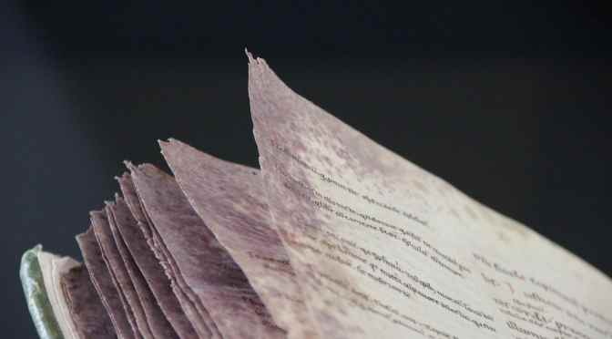 The Beauty of the Injured Book