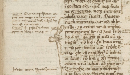 image of an octopus drawn in a book margin with the legs stretching so as to indicate an important passage of several lines