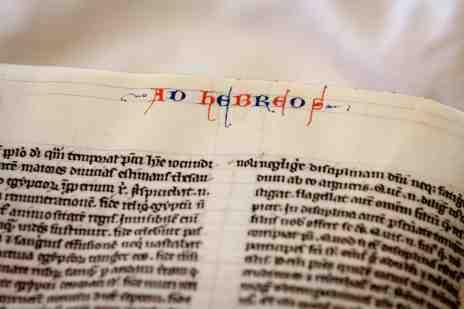 Leiden, Universiteitsbibliotheek, BPL 14 D (13th century)