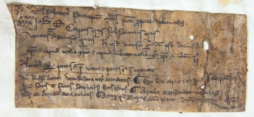 Leiden, University Library, BPL 191 D, fragment (France, 13th century) - Photo Giulio Menna