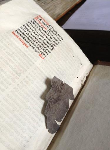 Zutphen, Librije, leaf bookmark in early print - Photo EK