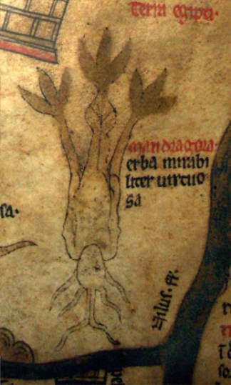 Hereford Cathedral, Mappa Mundi, detail (Mandrake)