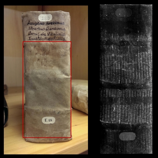 Example 3: large fragment inside parchment binding