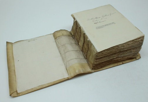 Fig. 6 - Same as Fig. 4, view on the spine