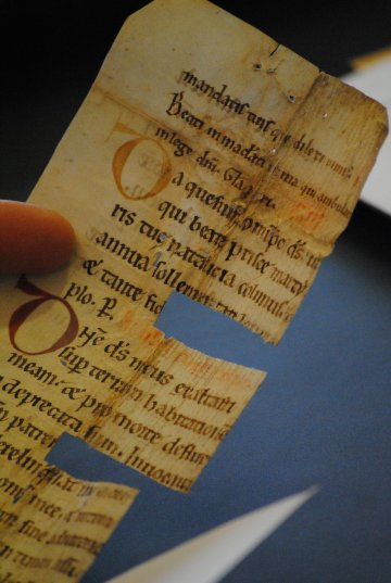Leiden, University Library, fragment from BPL collection - Photo Julie Somers